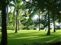 三亞西島、熱帶天堂森林公園、東嶼島溫泉純玩雙飛5日套餐